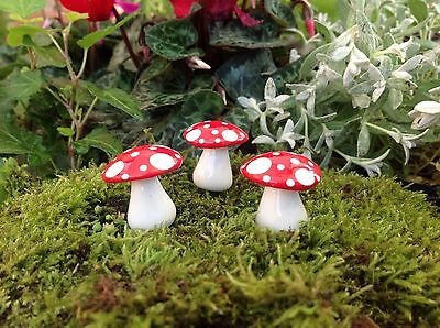 Fairy Garden / Terrarium Miniature Mad Hatter Mushroom / Toadstool - Wire Stem