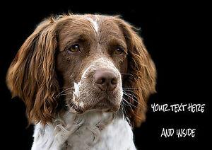 PERSONALISED-SPRINGER-SPANIEL-DOG-BIRTHDAY-ANY-OCCASION-CARD-Illus-Insert