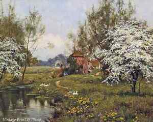 Old England Trees Pond Art Mill Cottage in Spring by E W Wait   8x10 Print 324
