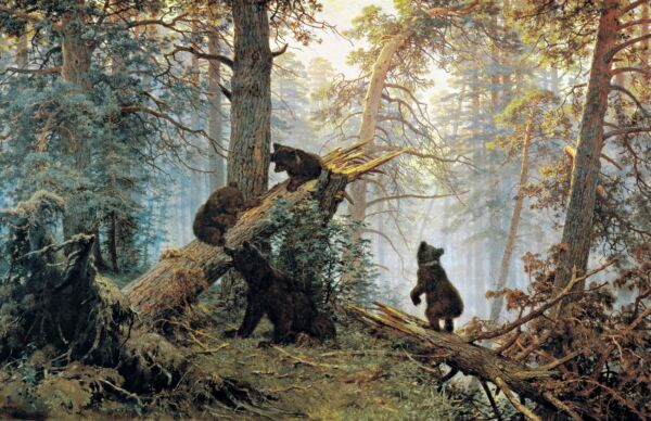 """"""" Petit Matin Dans Un Pin Forêt """" Ours Par Ivan Shishkin. Toile Animaux 13x19"""