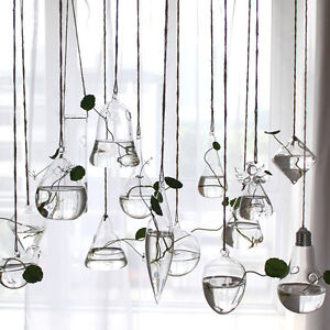 Flower-Hanging-Vase-Planter-Terrarium-Container-Glass-DIY-Art-Home-Wedding-Decor