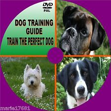 LEARN TO TRAIN YOUR DOG GUIDE, ON VIDEO DVD, EASY TO FOLLOW TRAINING TUITION NEW