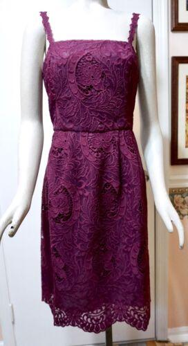 NWT $200 White House Black Market Sleeveless Lace Fit /& Flare Dress Gypsy