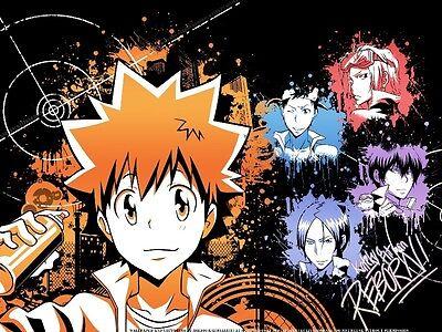 Poster Hitman Reborn Katekyo Family Clam Tsuna Chrome Tutor Manga Anime 8 Ebay