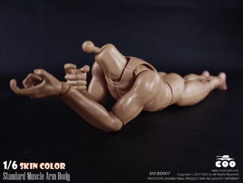 1//6 COOMODEL Standard Muscular Arm Male Body BD007 For Hot Toys TTM18 TTM19 USA
