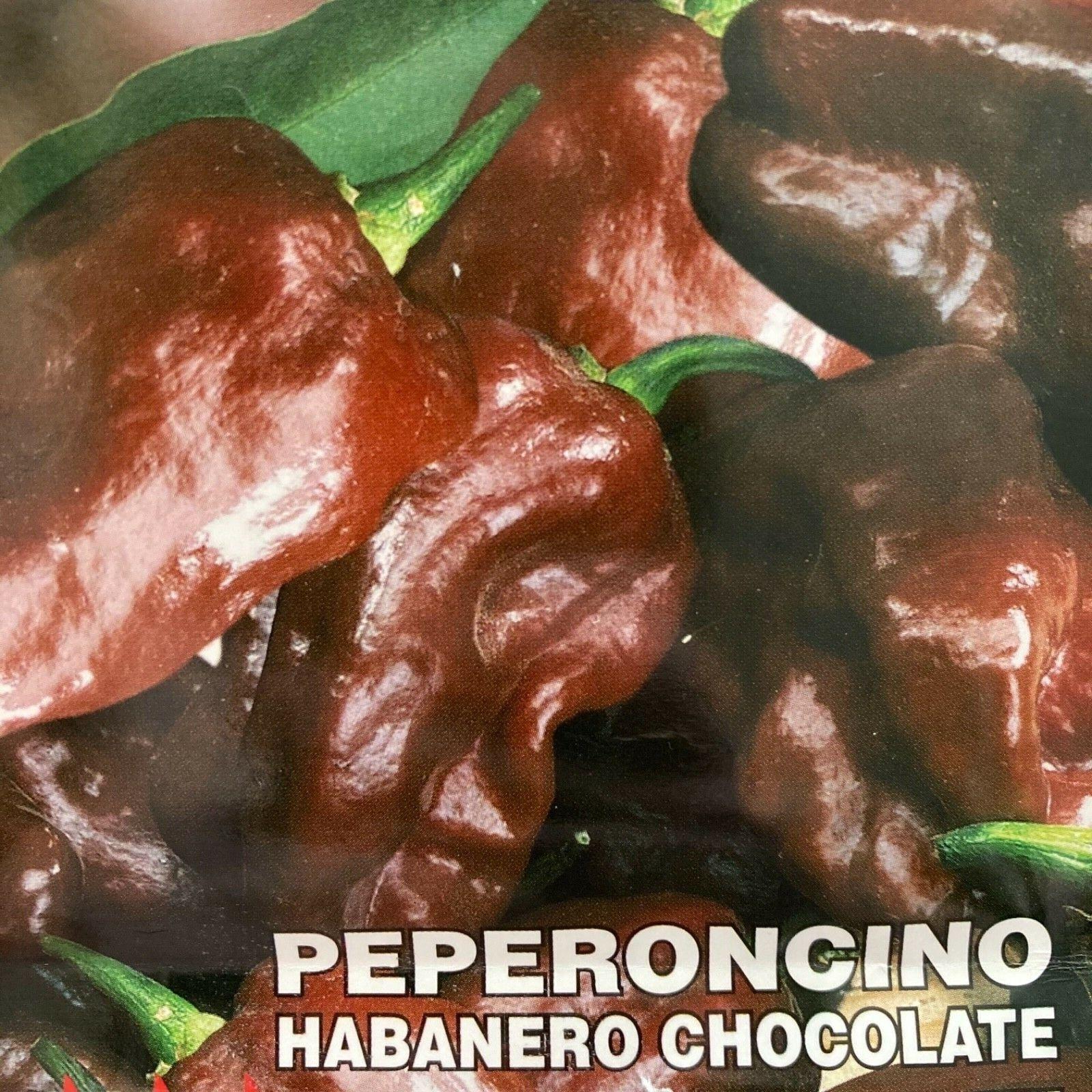 Chocolate Habanero Chilli Seeds x6 - Congo Black pepper chili chillies