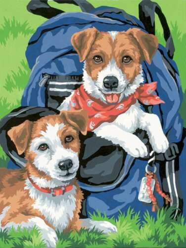"""Paint Works Paint By Number Kit 9/""""X12/"""" Backpack Buddies 088677911508"""
