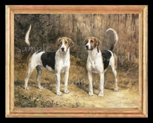 Fox Hounds Dogs Miniature Dollhouse Doll House Picture