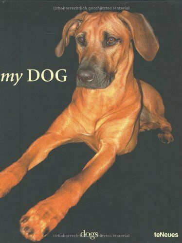 My Dog (Photography) By John Smith