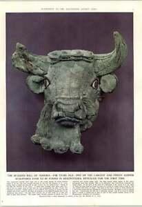 1952-Bearded-Bull-Sumeria-Found-Mesopotamia