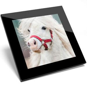 1 X Beau Blanc Pony Verre Coaster-cuisine étudiant Qualité Cadeau #8337-afficher Le Titre D'origine