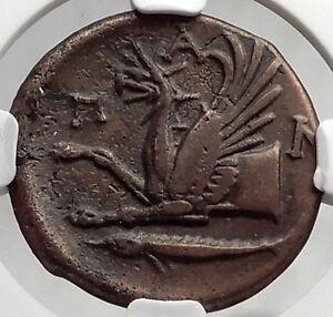 PANTIKAPAION-BOSPORUS-310BC-RARE-R1-Ancient-Greek-Coin-PAN-amp-GRIFFIN-NGC-i61946