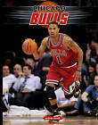 Chicago Bulls by Brian Howell (Hardback, 2011)
