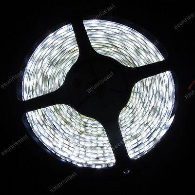 White Super Bright 5M 5050 SMD LED Waterproof  Flexible Strip 12V 300 LEDs