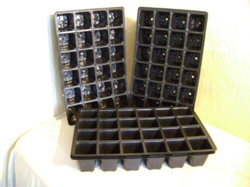 40 X 24 cella Full Size VASSOIO per Semi inserisce il valore EX