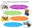 miniature 74 - 3D bébé enfants en bois puzzle Puzzle Jouets éducatifs Preschool Learning Toy UK