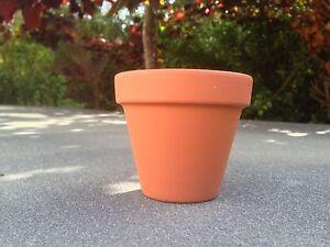 10-Mini-Terracotta-Plant-Pots-4-3cm-diameter-Great-Value-Free-P-amp-P-UK-based