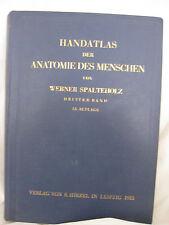 Werner Spalteholz, Handatlas der Anatomie des Menschen, Bd 3, 1933