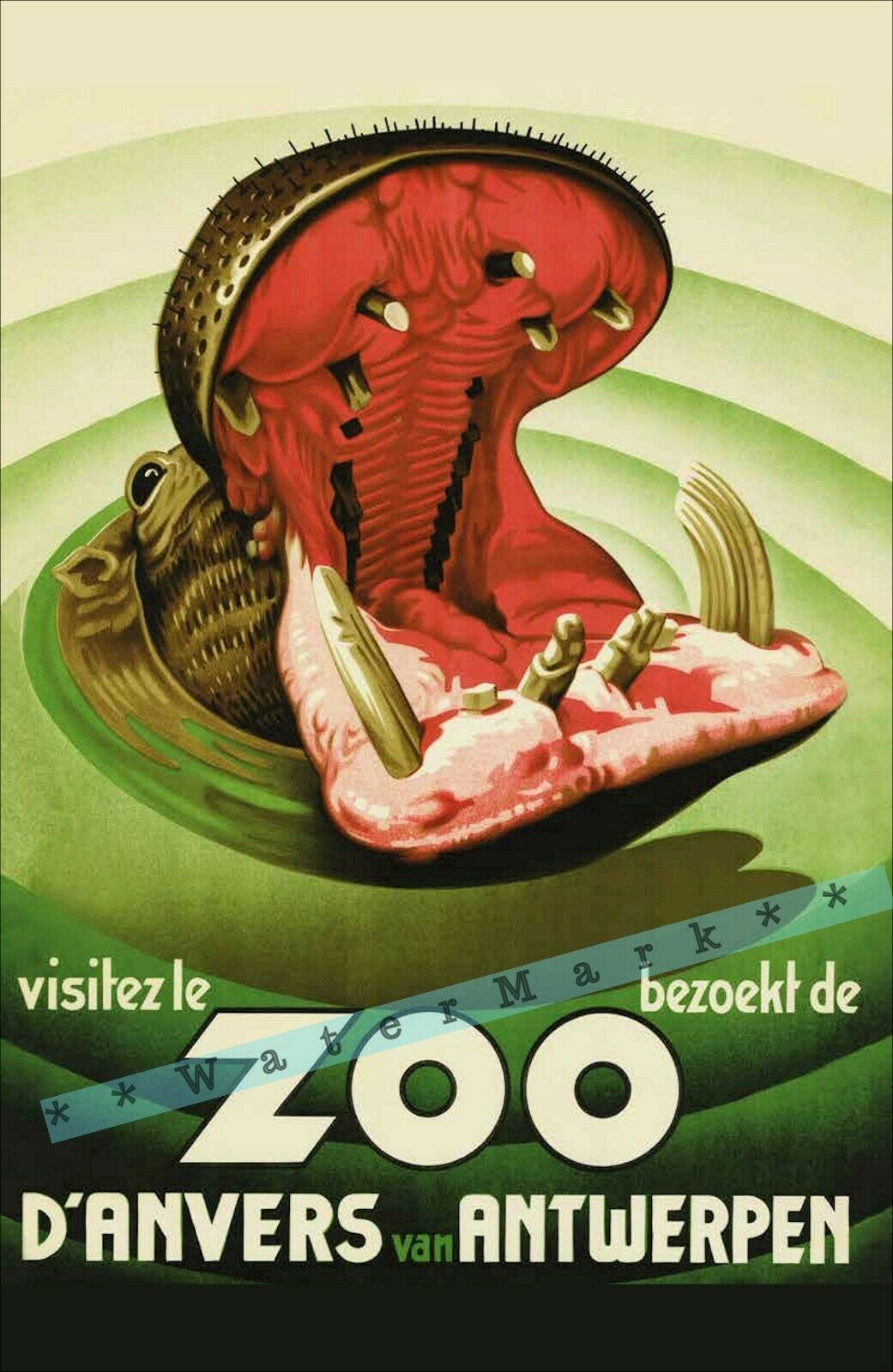 EXHIBITION NATURE ZOO BROOKSIDE USA VINTAGE POSTER ART PRINT 831PY