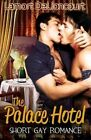 The Palace Hotel: Short Gay Romance by Lamort Delioncourt (Paperback / softback, 2014)