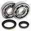 Crank-Bearing-amp-Seal-Kit-2001-Suzuki-RM250-All-Balls-24-1021 miniature 1