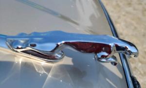 2001 Jaguar XJ8 XJ8