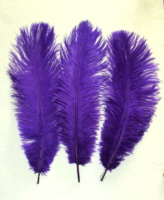 "Ostrich Feathers REGAL PURPLE 13-15"" length 5-6"" Wide Price is per feather"