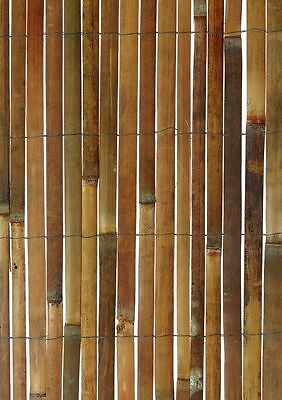 Garden Screening Bamboo Slat Screen 5m long  -  Available in 3 different heights