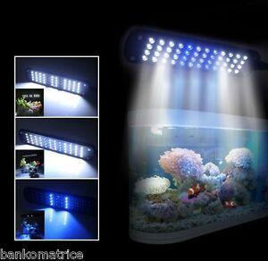 Poisson Aquarium 240v Lampe Led Lumière 110 Détails Déco Sur Bleu Blanc 28 Etanche Eclairage bvyYf76g