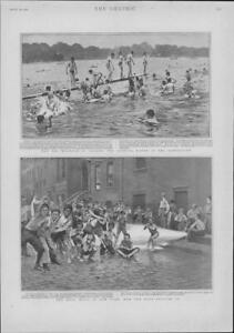 1901-Antique-Print-USA-New-York-Heat-Wave-LONDON-Serpentine-Evening-Bathe-131