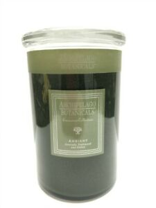 Archipelago-Botanicals-Soy-Candle-Ambiant-21-oz-120-hrs-Discontinued
