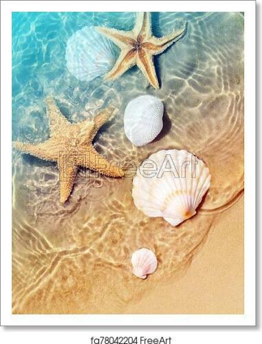 Wall Art Poster Home Decor Starfish And Seashell On Art Print // Canvas Print
