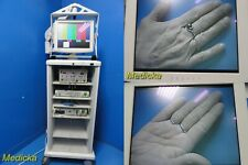 Smith Amp Nephew Dyonics Endoscopy Tower With Ed 3 Camera Head 400 Insufflator20816