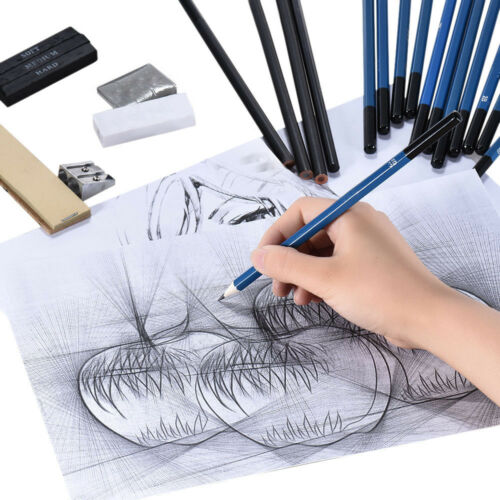 Set Sketching Drawing Pro Art Pencil Kit Graphite Charcoal Stick Artists Student