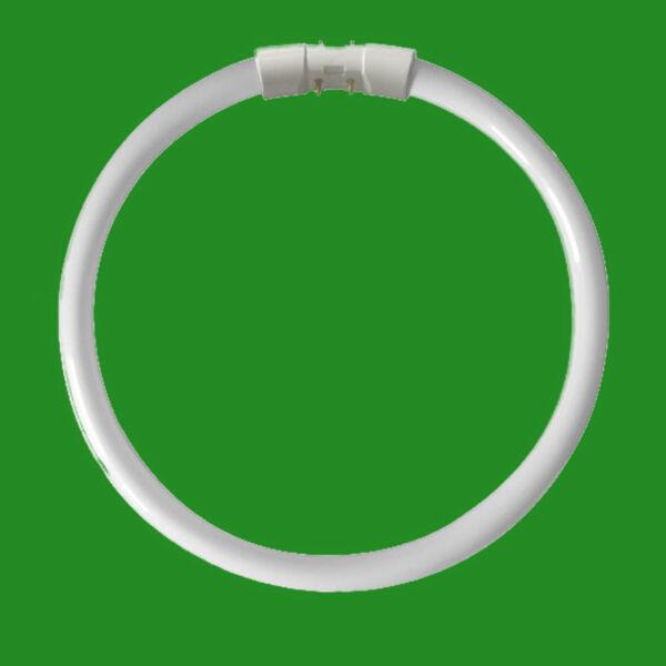 1 X 40w 2gx13 A 4 Pin T5c Circolare 302mm Lampadina Lampada Fluorescente 4000k Prezzo Di Liquidazione