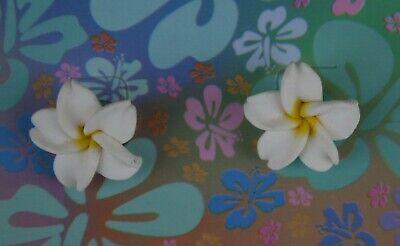 Hawaii Flower Ohrstecker Entlastung Von Hitze Und Sonnenstich