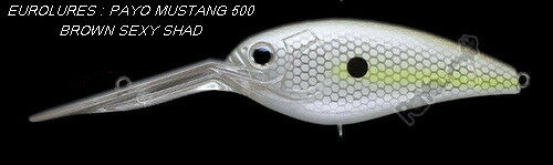 PAYO POISSON NAGEUR MUSTANG-500