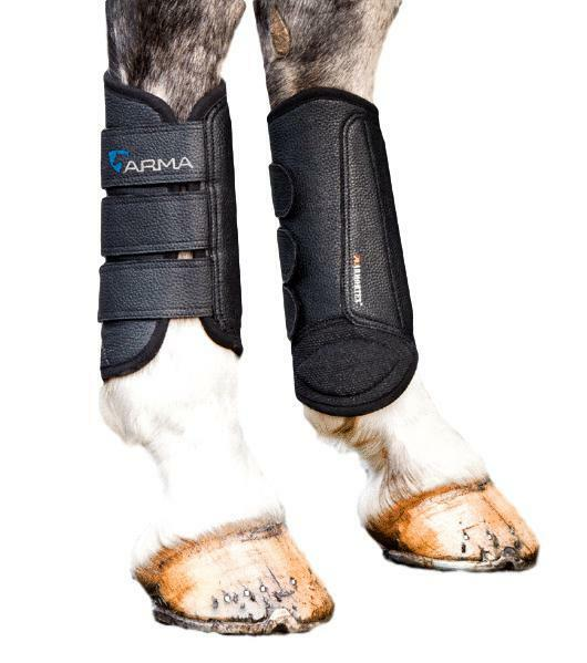 Shires Arma Cross Country Hind Brushing Boots with Tendon Shield Sold in Pairs
