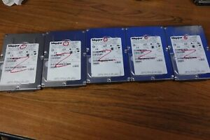 Lot-of-Maxtor-Atlas-10K-V-Ultra320-146GB-SCSI-Drives-Tested-Zeroed