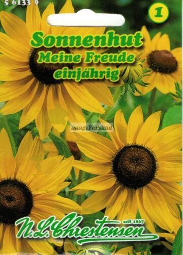 561339  Sonnenhut  Meine Freude Rudbeckia  Saatgut Samen