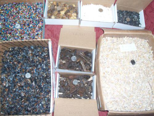 100 gemstones 50 fossil shark teeth ammonites stingray and 2 fossil horse teeth