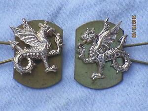 Exeter-University-Officer-Training-Corps-otc-Collar-Badges-Collar-Badges