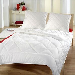 Bettenset Steppbett und Kissen Mikrofaser Kopfkissen Bettdecke 200x200 cm