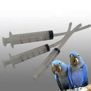 Details about 3pcs Baby Bird Budgie Parrot Hand Rearing Feeding Syringes  Crop Tubes lots SALE