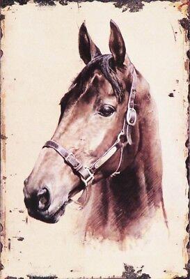 Guinness Horse Motiv 2 Blechschild Schild 3D geprägt gewölbt Tin Sign 20 x 30 cm