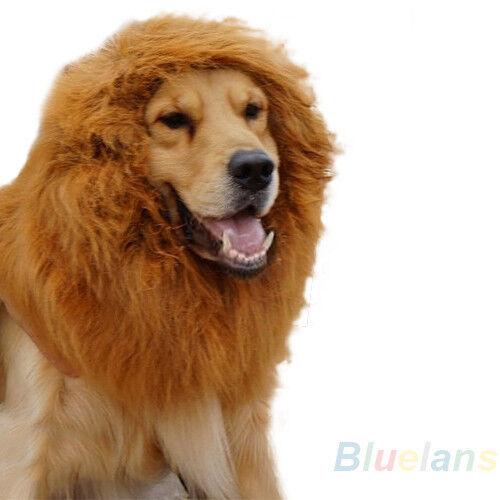 Large Pet Cat Dog Lion Wigs Mane Hair Party Festival Dress Clothes Costume B25U