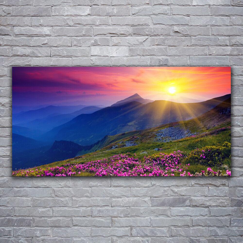Photo sur toile Tableau Image Impression 120x60 Paysage Montagne Fleurs Prairie