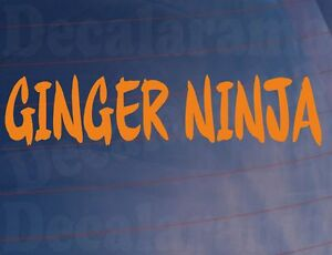 GINGER-NINJA-Funny-Novelty-Redhead-Joke-Car-Van-Window-Bumper-Vinyl-Sticker