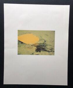Lothar-Baumgarten-timbo-Farboffsetdruck-1983-handsigniert-und-datiert