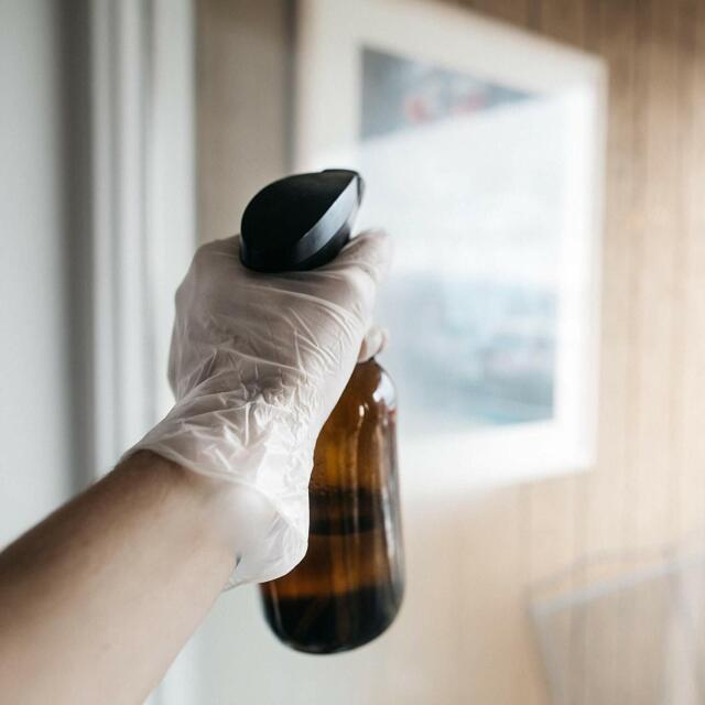 Clear Vinyl Gloves Bastion Disposable Powder Free Powdered Examination Medical